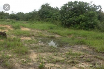 2000m² Residential Land Fenced, Guzape District, Abuja, Residential Land for Sale