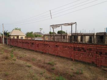 77.77391 Hectares of Land, Odougili, Onitsha, Anambra, Commercial Land for Sale