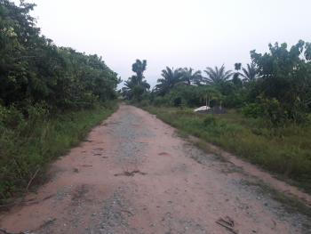2 Plots of Land, Avu, Owerri, Imo, Commercial Land for Sale