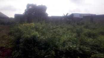 Full Plot of Land, Iyana Ipaja Ext, Alimosho, Lagos, Residential Land for Sale