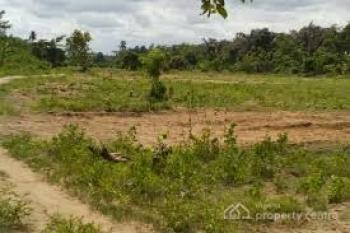 480 Hectares Plot of Land After Apo Mechanic Abuja, Apo, Abuja, Land for Sale