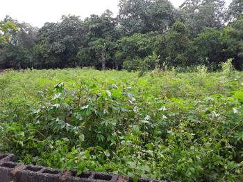 Land 7200sqm. with R of O. 60m. on a Very Good Location, Maitama District, Abuja, Residential Land for Sale