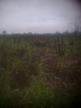 a Plot of Land, Along Western Avenue,, New Owerri, Owerri, Imo, Residential Land for Sale