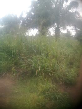 Plot of Land, Amafor Road By Amafor Market, New Owerri, Owerri, Imo, Residential Land for Sale