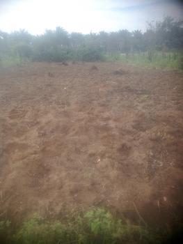 Plot of Land, Avu/obosima Road, New Owerri, Owerri, Imo, Residential Land for Sale