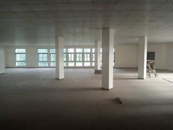 a Strategically Located Office Space, Overlooking The Expressway Off Nnpc Mega Filling Station, Central Business District, Abuja, Office Space for Rent