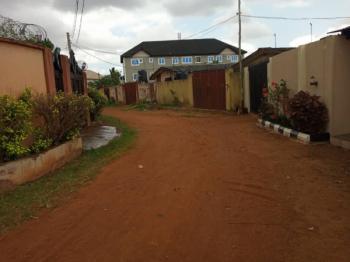 2 Nos of 2 Bedroom Flat Completed on Half Plot of Land, Baruwa Ipaja, Ipaja, Lagos, Flat for Sale