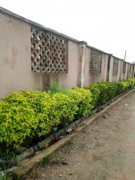 Valley View Estate Extension Land, Mustapha Aluko Street, Igbogbo, Ikorodu, Lagos, Mixed-use Land for Sale