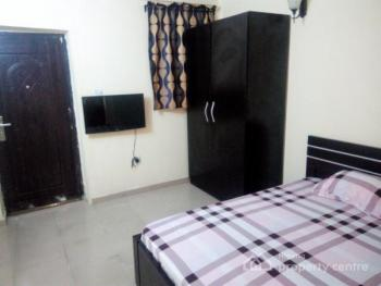 Furnished Studio+ Apartment - Available Monthly, 65 Agungi Ajiran Road,, Agungi, Lekki, Lagos, Self Contained (single Rooms) Short Let