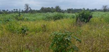 Good Farmland at a Strategic Location, Opposite Daywatermann College, Obafemi Owode, Ogun, Land for Sale