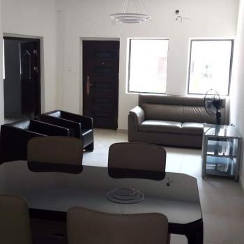 Luxury One Bedroom Furnished and Fully Serviced Flats, Old Ikoyi, Ikoyi, Lagos, Mini Flat for Rent