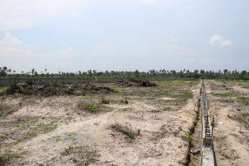 Plots of Land, Cedar Wood Park Phase 2, Akodo Ise, Ibeju Lekki, Lagos, Residential Land for Sale