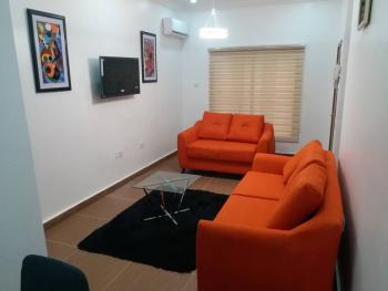 Fully Furnished & Serviced 1 Bedroom Mini Flat, Off Olusegun Obasanjo Way, Wuye, Abuja, Mini Flat for Rent