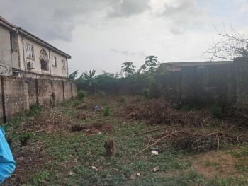 2 Plot of Land Together Fenced Gate, Peace Estate Genesis Estate Aboru Iyana Ipaja, Ipaja, Lagos, Land for Sale