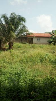 Mini Flat Set Back  with 4 Shops on a Full Plot of Land, Ayobo, Ipaja, Lagos, Mini Flat for Sale