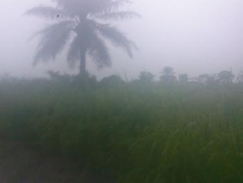 3349.995 Acres of Land, Close Olan School Bus Stop, Atan Ota, Ado-odo/ota, Ogun, Mixed-use Land for Sale