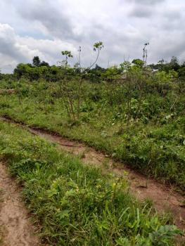 Plain Level Plot of Land of 50x100, Palace Road, Uteh, Off Upper Mission Extension, Benin, Oredo, Edo, Residential Land for Sale