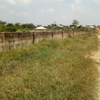 Land, Leshi, Atan Ota, Ado-odo/ota, Ogun, Mixed-use Land for Sale