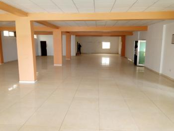 Store Room ,600 Square Meters., Jabi, Abuja, Warehouse for Rent