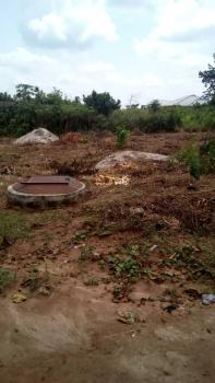Uncompleted 4 Bedroom Bungalow at Window Level on One and Half Plot of Land, Ilogbo,ota Bells University(obasanjos University), Ijaiye, Lagos, Detached Bungalow for Sale