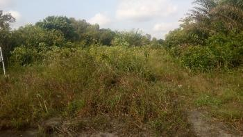 Buy 3 Acres of Land and Get 1 Acre Free with Registered Survey, Eleranigbe, Ibeju Lekki, Lagos, Commercial Land for Sale