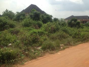Empty Commercial/residential Plot, New Owerri, Owerri, Imo, Commercial Land for Sale