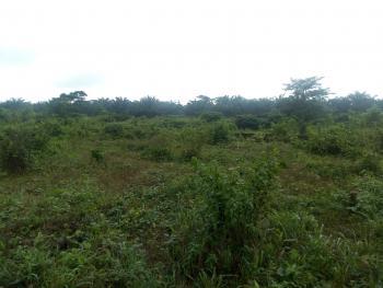 a Bare Land of 70ft By 100ft, Iyanomo Community, Off Sapele Rd., Benin, Oredo, Edo, Mixed-use Land for Sale