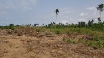 Half Plot, Off Fola Osibo, Lekki Phase 1, Lekki, Lagos, Residential Land for Sale