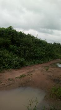 Affordable  and Gen Hone 100ft By 100ft, Ofunmwegbe Community Walking Distance From Newly Tared Iriri /awogba Road, Benin, Oredo, Edo, Mixed-use Land for Sale