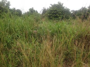 1 and Half Plot of Land, New Owerri, Owerri, Imo, Residential Land for Sale