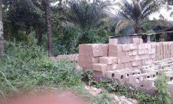 Three Plots of Land, Nnewi, Anambra, Commercial Land for Sale