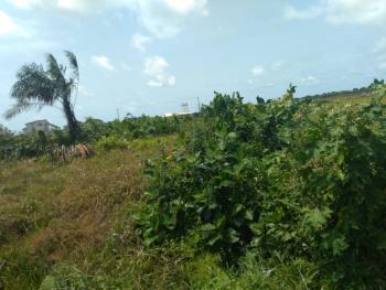 1 Hecter of Land Or 15 Plot, Lafiaji Road Along Lekki, Lafiaji, Lekki, Lagos, Mixed-use Land for Sale