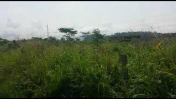 16½ Plots of Land, Umuaguma Village, Mgbidi, Oru West, Imo, Land for Sale