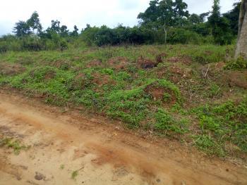 Land, Awka, Anambra, Mixed-use Land for Sale
