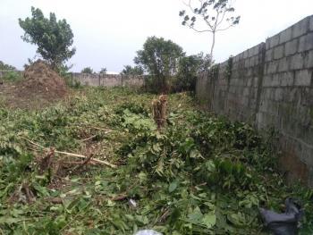 Dry Land, Alatise, Ibeju Lekki, Lagos, Mixed-use Land for Sale