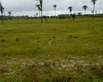 Distress Sale of 1300sqm  Plots, Off Jubril Aminu, Parkview, Ikoyi, Lagos, Residential Land for Sale
