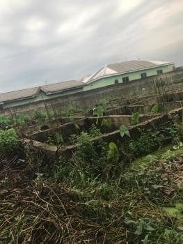 a Standard Plot of Land Measuring 650sqm with a Foundation of 4 Flats, Soluyi, Gbagada, Lagos, Residential Land for Sale