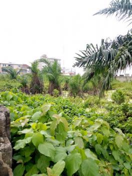 Dry 2,700sqm Land, Agungi, Lekki, Lagos, Land for Sale