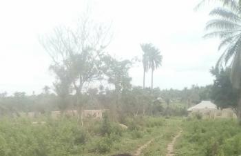 Prime Land Close to Legislative Quarters with Cofo, Gudu District Abuja, Gudu, Abuja, Mixed-use Land for Sale