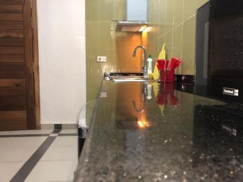 1 Bedroom, Ligali Ayorinde, Victoria Island (vi), Lagos, Mini Flat Short Let