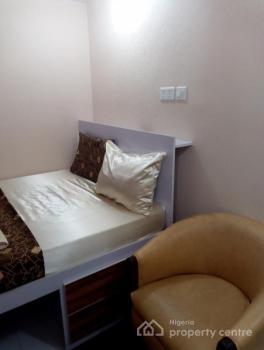 Luxuriously Furnished 1 Bedroom, Dolphin Estate, Ikoyi, Lagos, Mini Flat Short Let