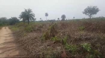 Land, at Igboghu, Epe, Lagos, Land for Sale