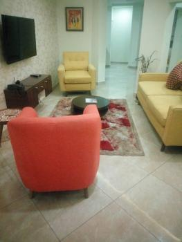 Exquisite 1 Bedroom Apartment, Wuse 2, Abuja, Mini Flat Short Let