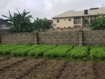2 Plots of Land, Iba, Ojo, Lagos, Residential Land for Sale