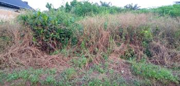 Land Measured 100ft Wide By 200ft Long, Utesi Community Off Benin,  Warri Bypass, Idogbo, Ikpoba Okha, Edo, Residential Land for Sale
