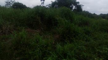 823 Acres of Land, Sokoto Road, Atan Ota, Ado-odo/ota, Ogun, Mixed-use Land for Sale