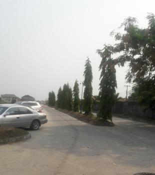 a Dry of 406 Square Metre Land in an Estate, on Paved Road, Eden Garden Estate, Ajah, Lagos, Residential Land for Sale