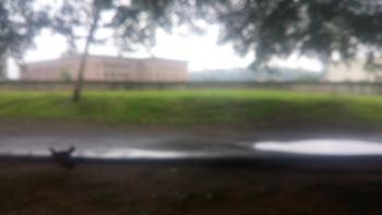 1560sqm Fenced Land with C of O, Market Road, Gudu, Abuja, Residential Land for Sale