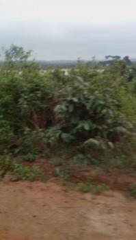 Acres of Farmland for Sale, Located Beside an Already Existing Poultry Farm Ladeke Village Off Itokin Road Epe Lagos Nigeria, Epe, Lagos, Commercial Land for Sale