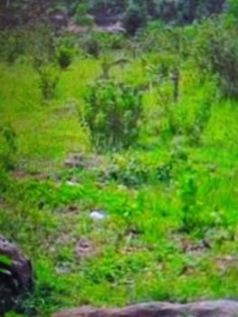 3 Plots of Land, Off Sani Abacha Road, Gra, Phase 3, Port Harcourt, Rivers, Commercial Land for Sale